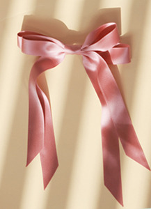 Super Ribbon21cm 롱테일